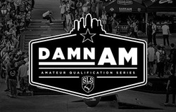 DAMN AM JAPAN presented by DC SHOES 世界最高峰へと続くスケートボードコンテストがついに日本で開催!!